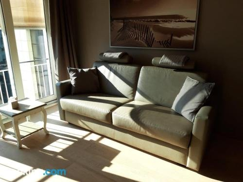 Sunny apartment direct access beach Blankenberge