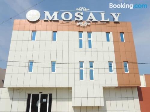 Hotel Mosaly