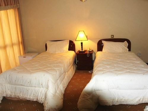 Hotel de Leopol International