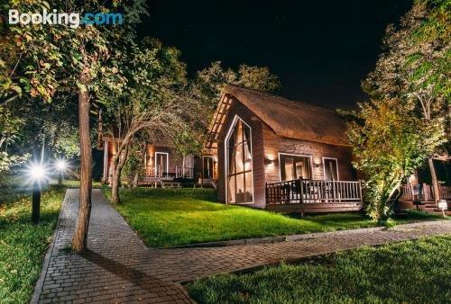 Tree House Chisinau