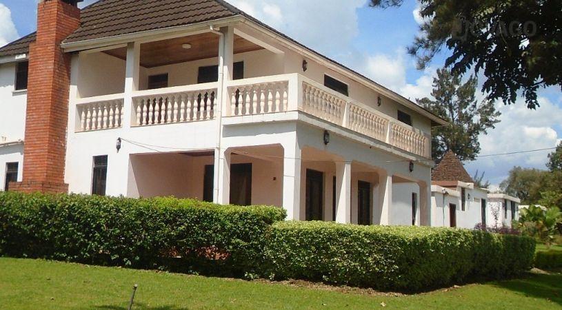 White Horse Inn Kabale