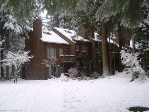 Mount Baker Cabin 5 by RedAwning